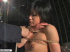 Domination Pictures -  Delicate Asian beauty struggles to free herself from Osada Steve