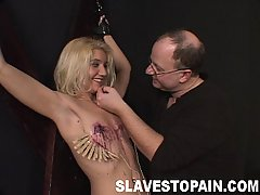 Torture Pictures -  Blonde Sapphire gets a hard spanking then some extreme breast bondage action