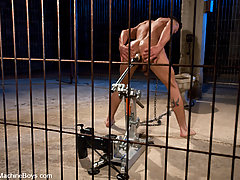Gay Pictures -  Dominic Pacifico gets tied up and fucked by machines.