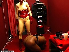 Maledom Pictures -  A harsh mistress oils up her favorite plaything and enjoys his humiliation