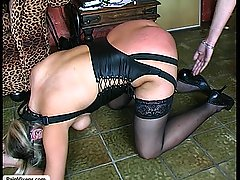 Pain Pictures -  A mistress demands her slave show her obedience in front of the queens guest
