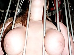 Bondage Pictures -  Chubby Tubbie gets clawed and tied on all fours