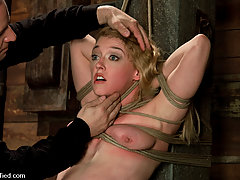 Punishment Pictures -  Darling gives us BLOODY SCREAMING FUCKING ORGASMS over & over & over again!