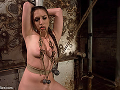 Bondage Pictures -  Pain Slut! : Sister Dee is pulled three ways