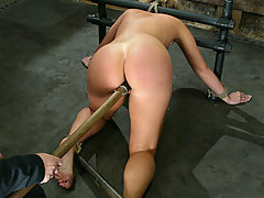 Punishment Pictures -  Another new face at Hogtied, Hollie Stevens, first time BDSM.