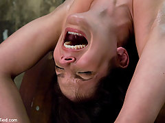 Bondage Pictures -  Bobbi Starr starts of the New Year screaming in orgasm