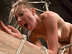 Bondage Pictures -  Sasha is beat, plugged and enticed to orgasm