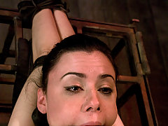 Couples Pictures -  Pretty girl submits to man and fucked in bondage.