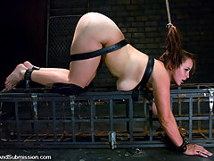 Couples Pictures -  full figured girl fucked in bondage.