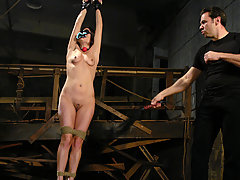 Couples Pictures -  Girl dominated and fucked in bondage.