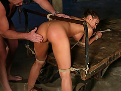 Submission Pictures -  Busty brunette in first time bondage and sex domination.
