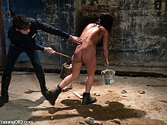 Punishment Pictures -  Sex Slave Slut Trained to Serve Sadistic Masters