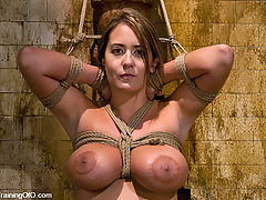 Punishment Pictures -  Gorgeous slave tits teased and trained