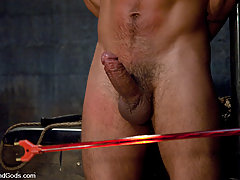 Gay Pictures -  Spencer Reed and Van Darkholme dominate Dominic Pacifico in a Live Shoot.