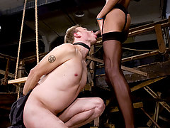 Transgender Pictures -  Mistress Soleli, fuckes her sissy bitch and cums in his face