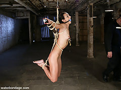 Water Bondage Pictures -  Hard body meets tight rope and screaming orgasms