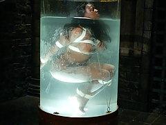 frei Hogtied Porno-Videos, Hogtied Sex Filme, Hogtied