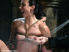 Water Bondage Pictures -  Ariel X and Wenonda pair up for some wet pussy sucking
