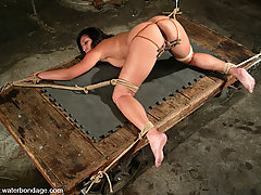 Water Bondage Pictures -  Jasmine is 19 and ready with her shaved pussy to get stick fucked