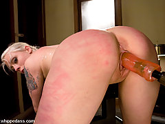 Lesbian Pictures -  Hardcore bondage and SM.