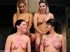 Lesbian Pictures -  Four girls in live interactive kinky rough sex.