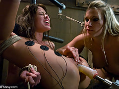 Torture Pictures -  Harmony breaks in a newbie with bondage and electricity