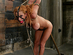 Bondage Pictures -  Shannon Kelly takes her first plunge into hardcore bondage.