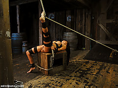 Punishment Pictures -  Eva Angelina gets her big tits tied and shocked