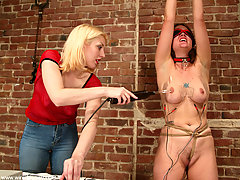 Punishment Pictures -  Dusty hung upside down with electrodes in her ass.