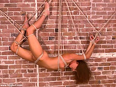 Bondage Pictures -  Lew Rubens, a suspension bondage expert, ties up Maria Shadoes.