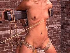 Bondage Pictures -  Jasmine takes it up the ass and pussy while tied.