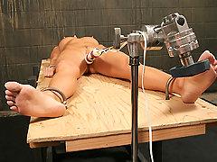 Slaves Pictures -  Sue Diamond