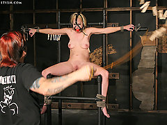 Slaves Pictures -  Rookie submissive cums hard!