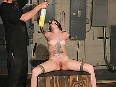 BDSM Pictures -  Calico Cums in Bondage
