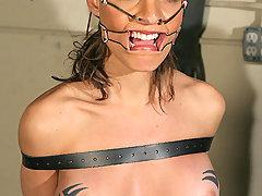 Forced Orgasms Pictures -  Skyler Blake