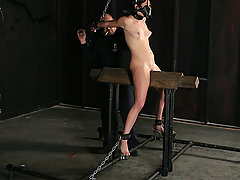 Extreme Pictures -  Squirting bondage slave orgasms!