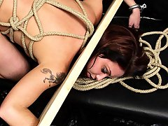 Pain Pictures -  Pretty slave in bondage getting fucked roughly from behind by her master