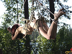 Punishment Pictures -  Hot redhead suspended on the tree in the wood