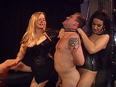 Transgender Pictures -  Two mistresses step on male slave's face and cock, then make him lick tranny ass clean