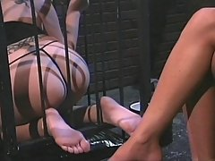 Femdom Pictures -  Mistress schools her sexy slave while she's caged and subjects her feet to ice punishment