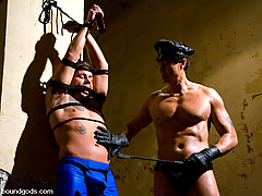 Gay Pictures -  Slave finn gets a suspended fuck and full cum facial.