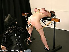Fetish Pictures -  FetishNetwork.com - Madisons misress takes her new horse out to play